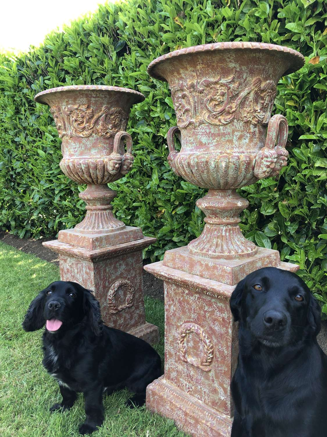 Pair of Cast iron campagna urns on plinths
