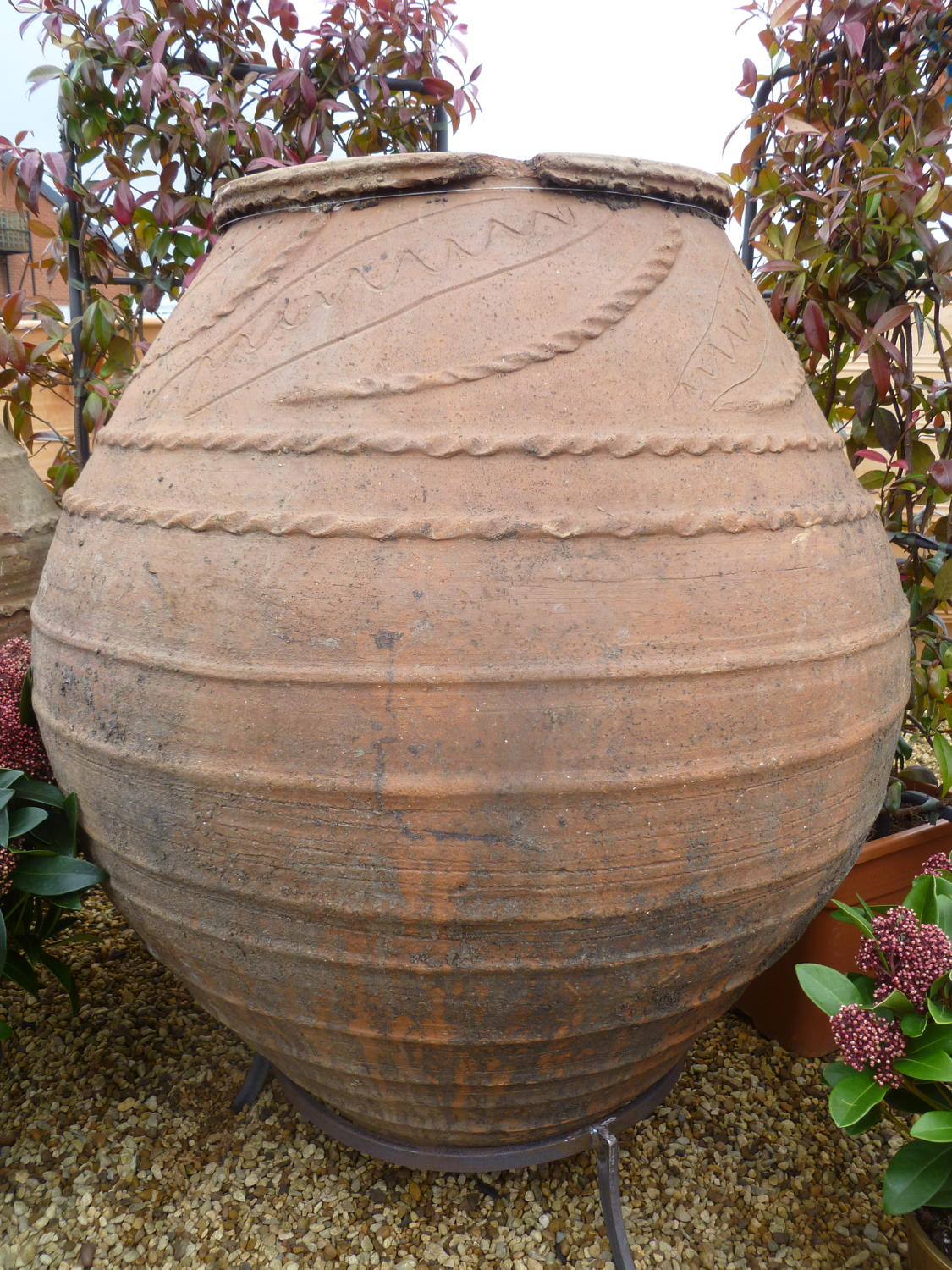 Antique Olive Jar 96 cm tall