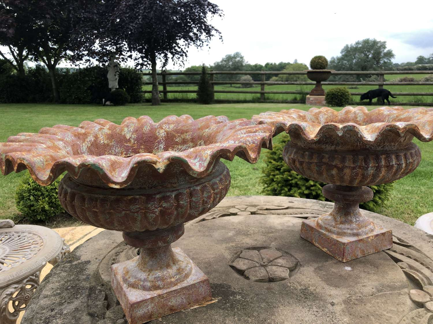 Pair of cast iron crinkle urns - Cast iron planters