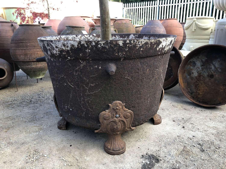 Antique cast iron Cauldron - EX Large Cast Iron Planter